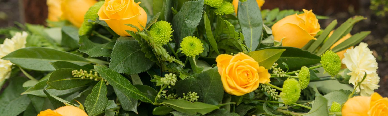 Beställ begravning online – Axelssons Begravningsbyrå Lund – Beställ här - header_55-1500x450